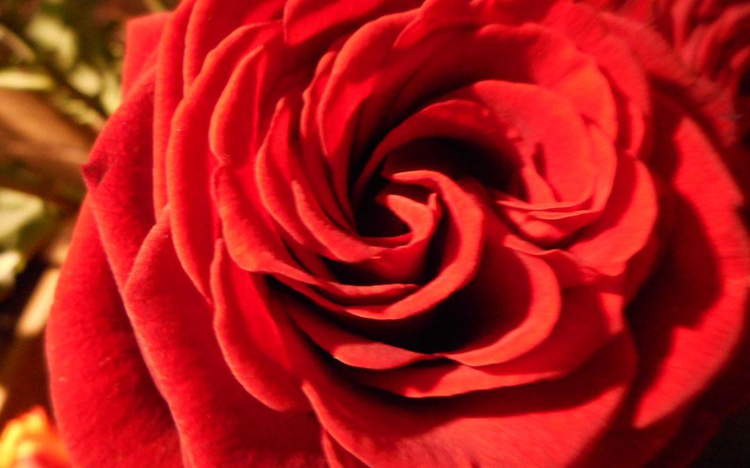 Sonntag, 14. Februar ist Valentinstag ….